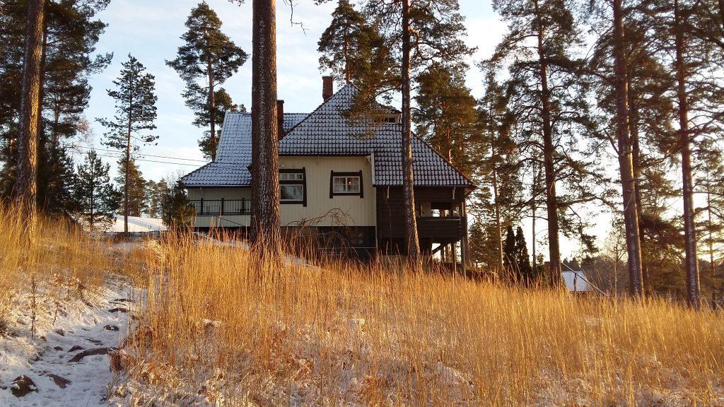 Ainola päärakennus talvella, kahvilarakennuksen suunnasta katsottuna. Rakennuksen pohjoispäätyä kehystävät suuret männyt. Maassa ja rakennuksen katolla on vähän lunta ja ilta-aurinko värjää mäellä kasvavat heinät kullankeltaisiksi.