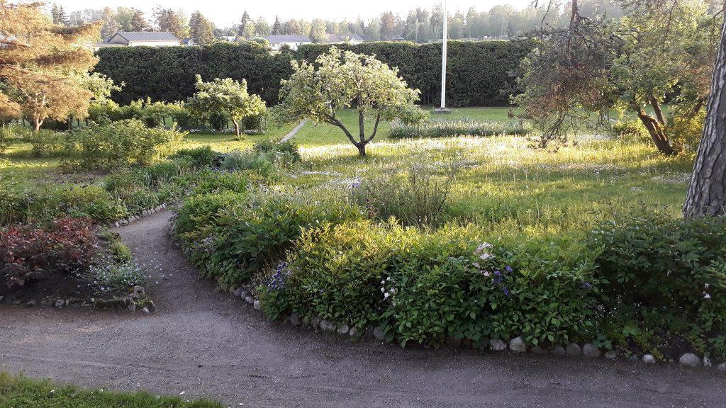 Ainolas trädgård på våren. Äppelträd i blom.
